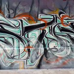 astro ozer