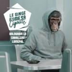 le-singe-fume-sa-cigarette-290x290